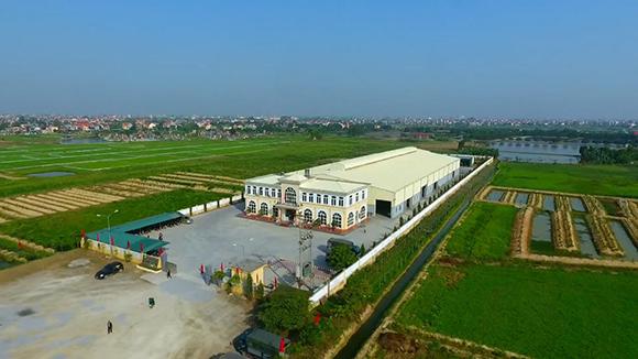 """Công ty CP nông sản Hưng Việt - """"Anh cả"""" trong ngành xuất khẩu vải thiều và ớt"""